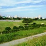 多摩川でトライアスロン!|XTERRA Kawasaki