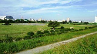 古市場サッカー場:多摩川の堤防上から眺めたところ