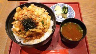 かき揚げ飯|日本の旬の味 百膳