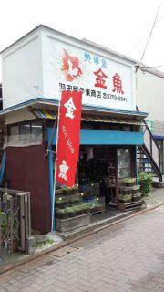金魚屋さん|武蔵新田商店街