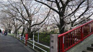 桜橋|桜坂(東京都大田区)