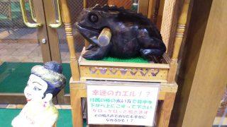 幸運のカエル チャオタイ 川崎店