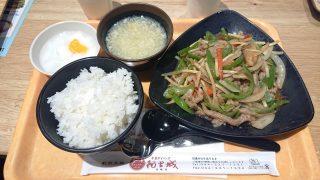 牛肉とピーマン炒め|阿里城 川崎ルフロン店