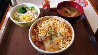 チーズ牛丼サラダセット すき家 下平間店